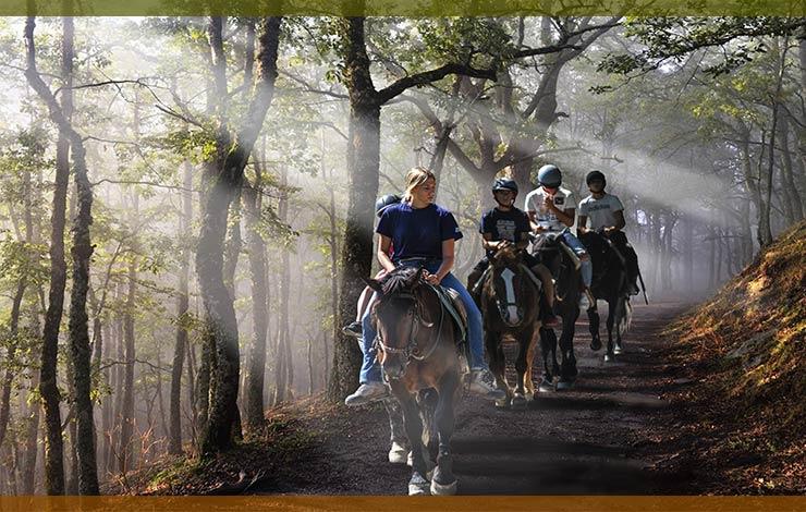 rutas-a-caballo-candeleda